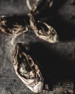 dried_fish