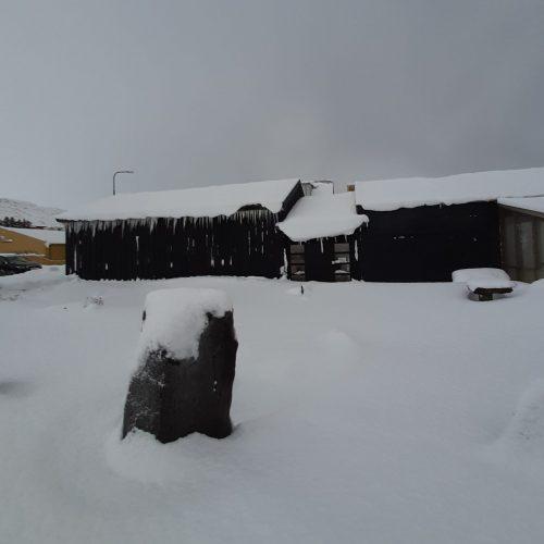 wintermuseum